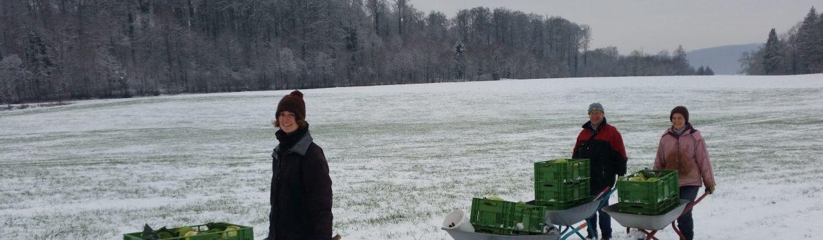 Ackerjournal der Solawi Bodensee e.V. – Frühjahr 2021